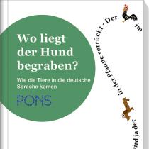 Veröffentlichungen & Preise